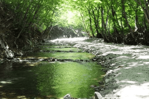三依渓流つり場