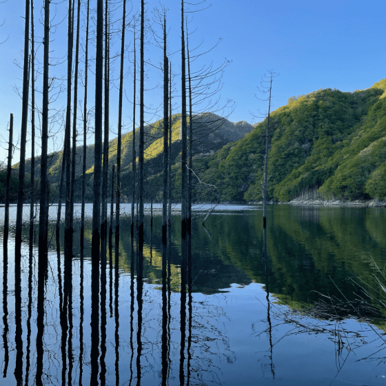 湯西川ダム湖