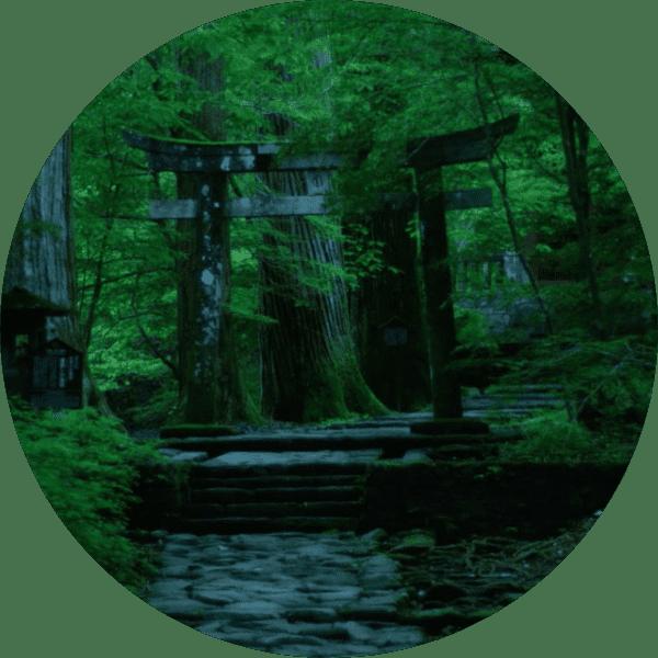 究極の瞑想ルート